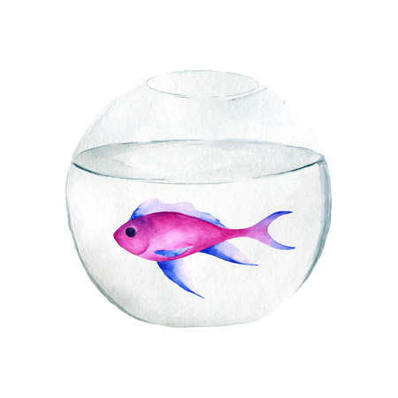 Aquarium, a realistic aquarium with fish and algae. Watercolor illustration of aquarium with fish isolated on white. Zdjęcie Seryjne - 128723062