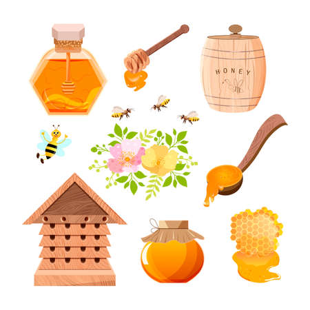 Bee, honeycomb, wooden honey dipper, glass jar full of honey. Çizim