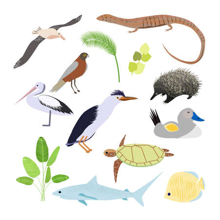 Funny cartoon mammals, reptiles, birds icons of Australian continent isolated on white background. Çizim