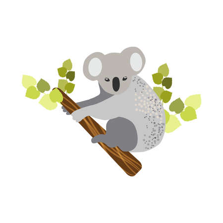 Australian animals. Vector illustration in flat style.The main symbols of the country.