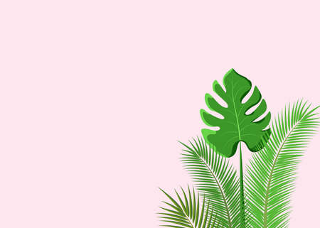 Tropical leaf background,trendy text space.Design poster, banner, web site, isolated illustration