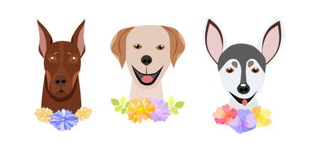 Cute dog fashion isolated pets on a white background.They can be used in the brochure, banners, ads.Vector illustration. Çizim