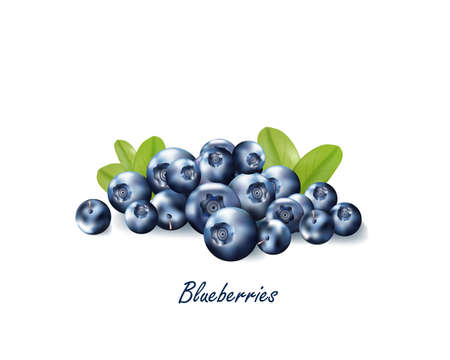 Set of realistic ripe berryes on a white background.The berryes for advertising,labels,organic agriculture symbol. Illustration