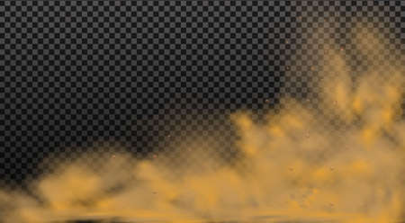 Dust cloud with particles.Realistic vector isolated on transparent background. Stock Illustratie