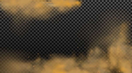 Dust cloud with particles.Realistic vector isolated on transparent background. Illustration