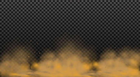 Dust cloud with particles.Realistic vector isolated on transparent background. Stockfoto - 147541172