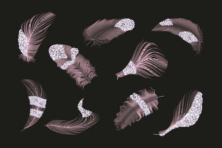 Set of different falling fluffy twirled feathers on a white background.