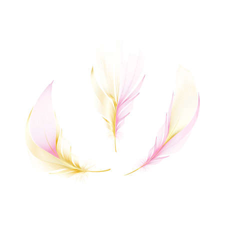 Vector gold feathers collection. Falling fluffy twirled feathers.