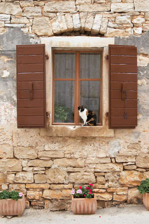 Croatia, Bale. The cat sits on the windowsill of an old house photo