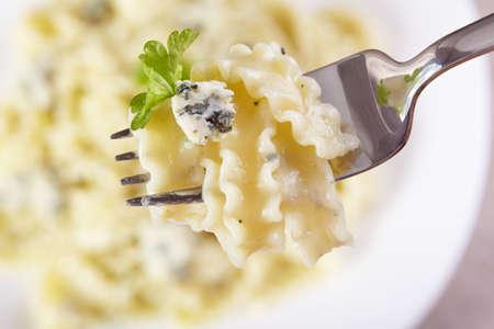 European cuisine. Pasta in cream sauce with blue cheese Stock Photo - 12923013