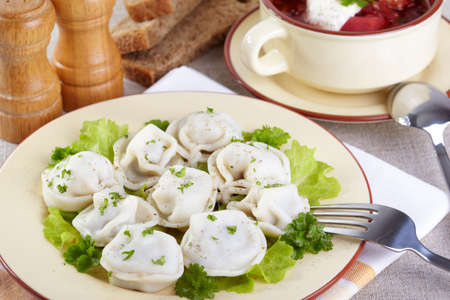 Traditional Russian cuisine  Pelmeni and borscht
