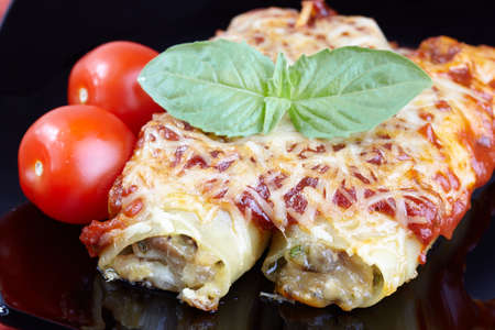 Cannelloni with chicken and mushrooms