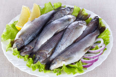 grayling: Lightly salted grayling on a white plate