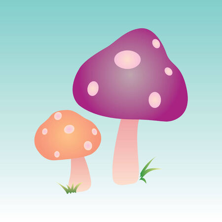 chlorophyll: This is a vector illustration suitable for everything related to mushrooms