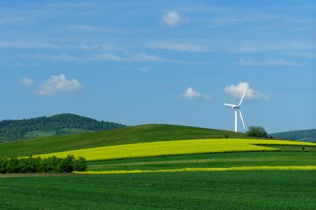 Windmill on a yellow-green field, alternative energy