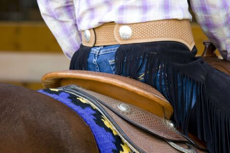 western riding equipment detail