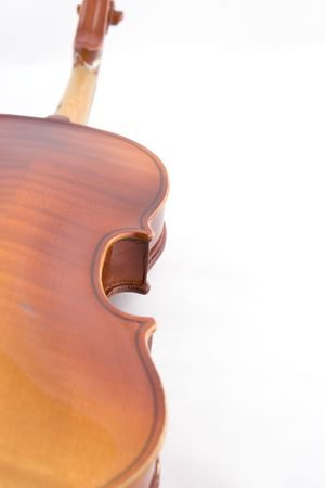 Violin closeup on a white background