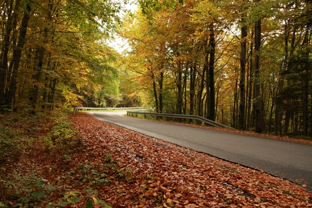 Mountain road during the fall Stock Photo