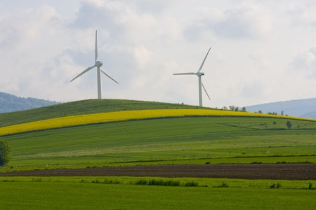 Windmill over rapeweed field in bloom photo
