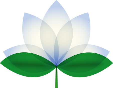 buddha lotus: White Lotus blossom. Stock Photo