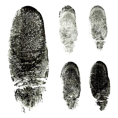 fingermark: Fingers print on white background. Vector illustration.