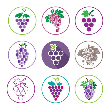 Grapes Icons and Logo Set. For Identity Style of Natural Product Company, Restaurants, Bars and Wine Houses. Organic Grapes, agriculture and natural eat.Contour lines. Flat design. Design elements. Circle icons. Realistic image. Ilustração