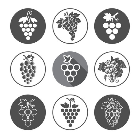 bunch: Grapes Icons and Logo Set. For Identity Style of Natural Product Company, Restaurants, Bars and Wine Houses. Organic Grapes, agriculture and natural eat.Contour lines. Flat design. Design elements. Circle icons. Realistic image. Illustration