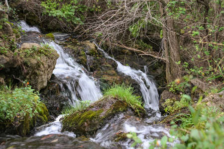 Beautiful picture a stream I came across while hiking at Governor Dodge State Park in Wisconsin. 写真素材
