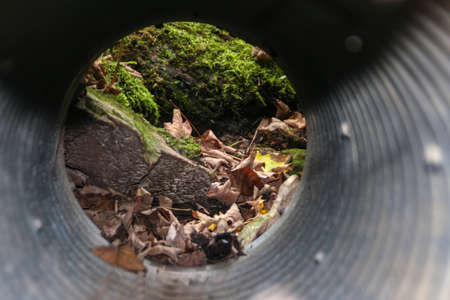 Photo I shot through a drainage pipe while hiking in southern Wisconsin.