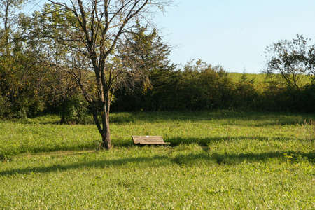 Remote bench in a large grass field I came across while hiking at Indian Lake in Wisconsin. Banco de Imagens