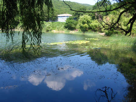 Mirroring blue sky and white cloud in mountain lake, water-lily, small house. photo