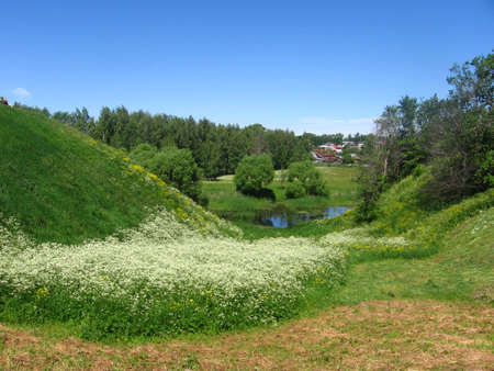 Village landscape with blossoming meadow herbage among hill with pond and cottage in the distance. photo
