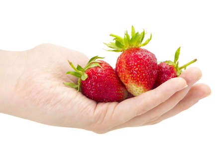 fresh strawberry in hand on a white background Stock Photo - 4888137