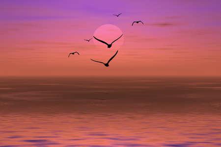 albatross: Flight of albatross ëåÿòùÿÿ to coast in a crimson sunset Stock Photo