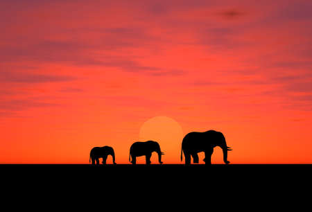 companionship: Three elephants on a decline (a background for addition of an inscription) Stock Photo