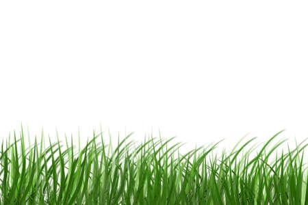 simulation grass (sketch grass) Stock Photo - 1745819