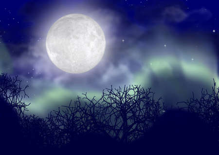 both:  The polar lights with the full both clear moon and tops of trees Stock Photo