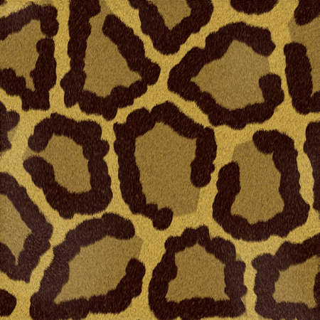 covering cells: Structure of an animal (short-haired wool) - leopard