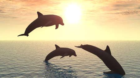 Tres delfines flotando en el océano (control de la luz)  Foto de archivo