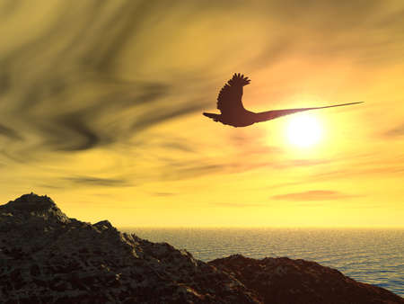 Eagle on a background of the coming sun. Rocky coast of ocean. photo