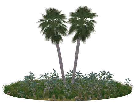 midair: Fragment of island with two palm trees, a grass and stones. It is Completely isolated on a white background.