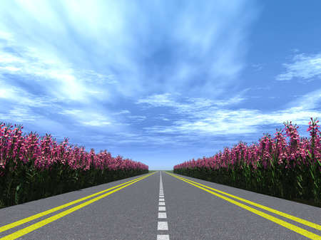 lea: Highway with a marking with blossoming flowers  on a roadside. Brightly blue, not much cloudy sky Stock Photo
