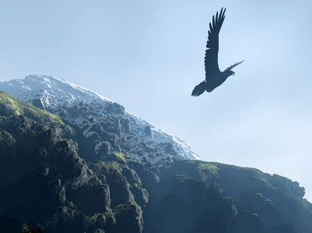 Silhouette of an eagle soaring above mountains (snow tops and mountains with a wood) photo