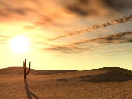 barren land: Sunset in desert. A landscape at night in deserted desert