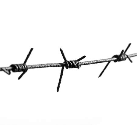 The barbed wire is isolated on a background of the white Stock Photo - 2389422