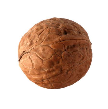 elaboration: Walnut. High detailed elaboration, it is isolated on a white background Stock Photo