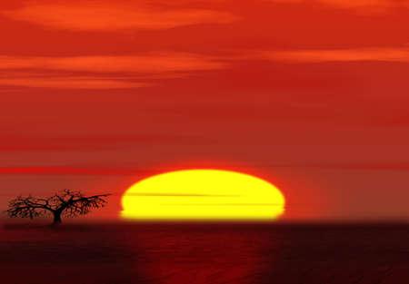 Sunset in desert.  Stock Photo - 2666864