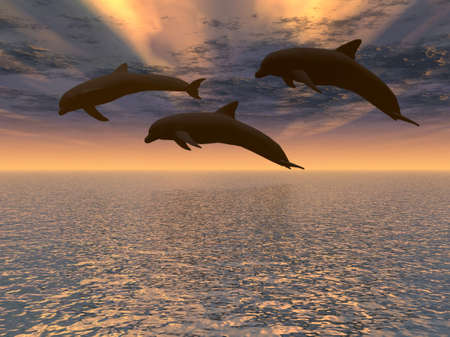 Three dolphins floating at ocean and drama sky photo