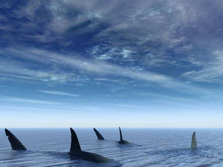 Flight of sharks. Sea amphibians floating under water