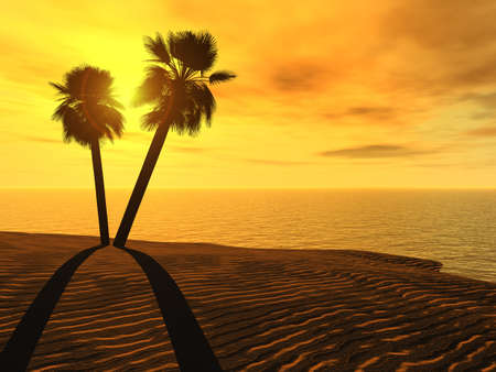 exoticism: Palm trees and sunset. The effective sun, a beach, water